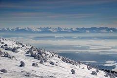 Pins couverts par la neige épaisse sur la pente et les crêtes venteuses de Tatra photo stock