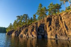 Pins sur les falaises de l'île de Valaam Photographie stock libre de droits