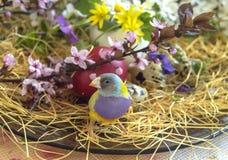 Pinson multicolore de Gouldian entre les fleurs de floraison de ressort et un oeuf de pâques rouge Photo stock