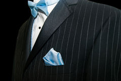 Pinstriped Tux Royalty Free Stock Photos