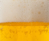 Pint amber beer Royalty Free Stock Photography