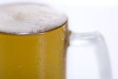 Pint of beer Royalty Free Stock Photo