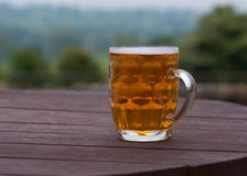Pint of beer in beer garden Royalty Free Stock Photography