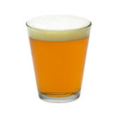 Pint of beer isolated stock photo