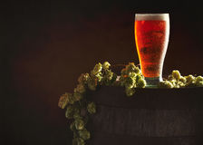 Pint Of Beer On Keg. Pint of beer in a glass on a wooden barrel with hops royalty free stock photos