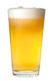 Pint of Beer. On White royalty free stock photography