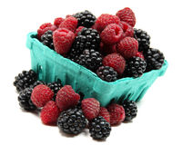 Pint of blackberries and raspberries. Isolated pint of organic blackberries and raspberries stock photography