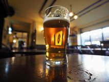 British ale beer pint selective focus on glass. A pint of British ale beer in a pub selective focus on glass stock images