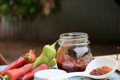Pint glass jar of homemade red and green Chile pepper sauce Royalty Free Stock Image