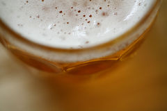 Pint glass of lager beer with foam head closeup macro Stock Photography