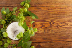 Pint and hop plant. Image of a pint with a hop plant around it Royalty Free Stock Images