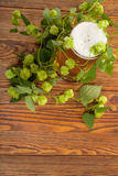 Pint and hop plant Stock Photo