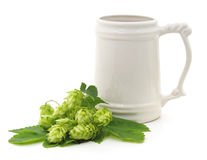Pint and hops. Pint and hops on a white background stock images