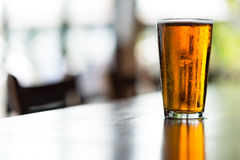 Pint of India Pale Ale royalty free stock images