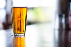 Pint of India Pale Ale. Pint glass of India Pale on long bar in afternoon stock images