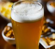 Pint of lager beer in a glass, set of various snacks, a standard. Set of drinking and eating in a pub, beer and snacks Stock Image
