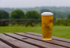 Pint of lager on table Royalty Free Stock Photos