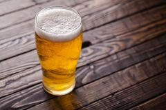 Pint of light beer Stock Images