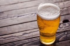 Pint of light beer Stock Photography