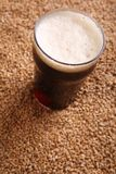 Pint of stout over malt Stock Images