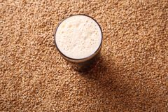 Pint of stout over malt Royalty Free Stock Image