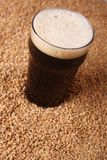 Pint of stout over malt Royalty Free Stock Images