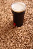 Pint of stout over malt Royalty Free Stock Photo