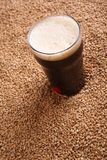 Pint of stout over malt Royalty Free Stock Photography