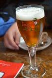 Pint van Bier Royalty-vrije Stock Afbeeldingen