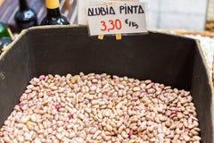 Pinta alubia φασολιών των βακκίνιων για την πώληση σε Οβηέδο, αστουρίες, Ισπανία στοκ εικόνα