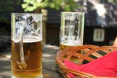 Pinta da cerveja Imagens de Stock Royalty Free