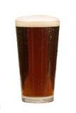 Pinta da cerveja Fotografia de Stock Royalty Free