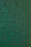 Pinta da placa de madeira do verde Foto de Stock Royalty Free