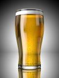 Pinta de la cerveza Foto de archivo