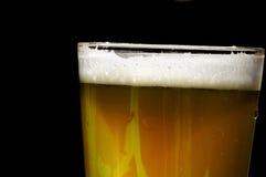 Pinta della birra Fotografia Stock