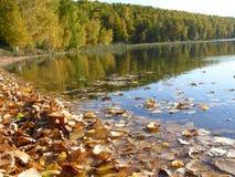 Pinta otoño Fotografía de archivo
