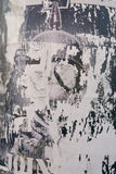 Pintada Fotografía de archivo