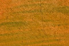 Pintada anaranjada Foto de archivo