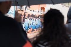 Pintada de Bogotá Fotografía de archivo libre de regalías