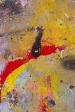 Pintada hermosa Foto de archivo libre de regalías