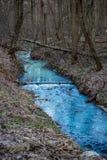 Pintado em um rio azul brilhante imagem de stock royalty free