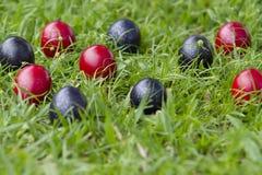 Pintado ovos da páscoa vermelhos e azuis fotos de stock