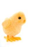 Pintainho de Easter imagem de stock royalty free