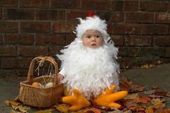 Pintainho do bebê Fotos de Stock