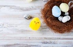 Pintainho e ovos da páscoa no ninho Foto de Stock Royalty Free