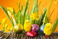 Ovos da páscoa e pintainhos Foto de Stock Royalty Free