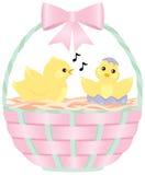 Pintainhos em uma cesta de Easter Foto de Stock