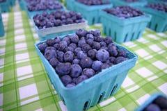 Pintas de bayas azules Imagenes de archivo