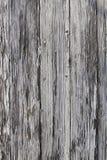 Pinte a casca longe da placa de madeira estreita fotos de stock