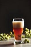 Pinte de bière Photographie stock